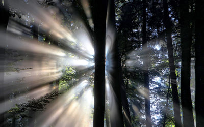 IT'S TIME TO CONFRONT DARKNESS WITH THE GOODNESS OF LIGHT