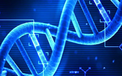 WHAT'S IN YOUR SPIRITUAL DNA?