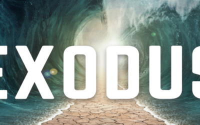 THE IMPORTANCE OF EXODUS